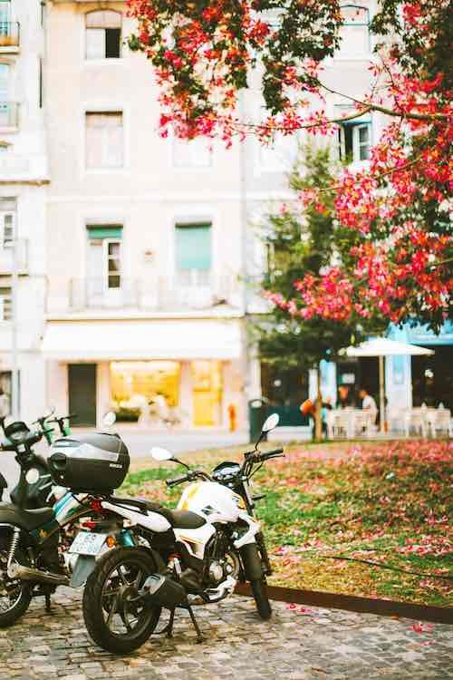 Motos aparcadas junto a buganbilla en Portugal